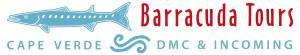 Logo BT DMC INCOMING